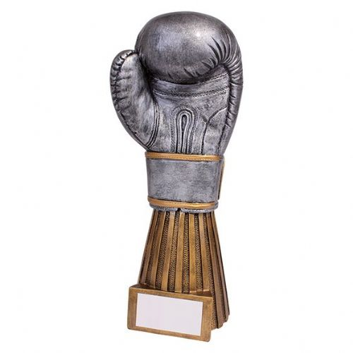Challenger Boxing Award 230mm